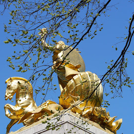 The Golden Monument II by Joatan Berbel - Buildings & Architecture Statues & Monuments ( statue, colorful, monument, tree tops, golden )
