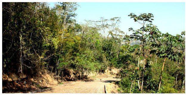 Lote/Terreno em Vila Progresso  -  Niterói - RJ