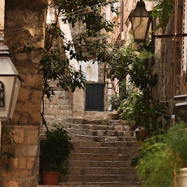 Staying in the Shade by Rose Lindquist - Buildings & Architecture Other Exteriors ( adriatic, stone steps, preserved, croatia, coastal village, historical, quaint )