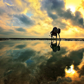 Bara Silhouette by Alit  Apriyana - Landscapes Waterscapes