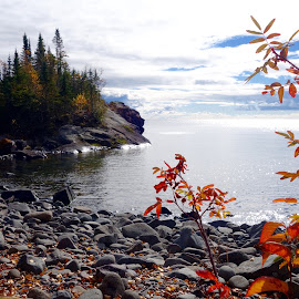 October Daze by Sandra Updyke - Landscapes Waterscapes ( fall colors, autumn, north shore, lake superior, horseshoe bay )
