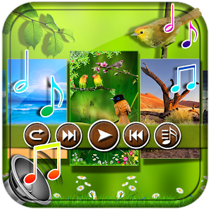 Nature Sounds to Relax Pro
