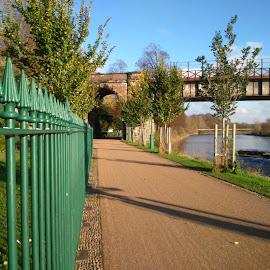 railings by Dave Lupton - City,  Street & Park  City Parks