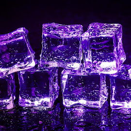 Ice Cubes by Mario Toth - Artistic Objects Still Life ( reflection, refrigerate, frost, clear, macro, cold, clean, fresh, ice, drink, dark, glass, pile, transparent, light, closeup, black, abstract, purple, texture, beautiful, white, translucent, solid, freeze, background, cube, square, stack, small )