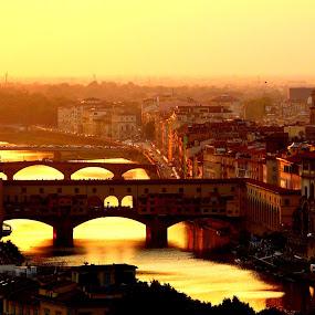 Flowing Gold by Dhannya Jacob - Buildings & Architecture Bridges & Suspended Structures ( florence, sunset, ponte vecchio, gold, bridges, italy, pwcbridges, river )
