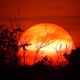 by Scott Bennett - Landscapes Sunsets & Sunrises