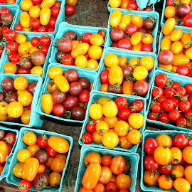 cherry tomatoe harvest by Julia Pegler - Food & Drink Fruits & Vegetables ( cherry, orange, red, farmers market, yellow, tomatoes )