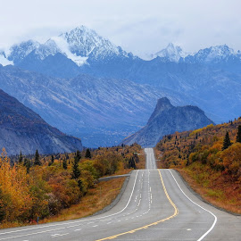 The Glenn Highway by Patricia Phillips - Landscapes Travel ( highways alaska glenn autumn )