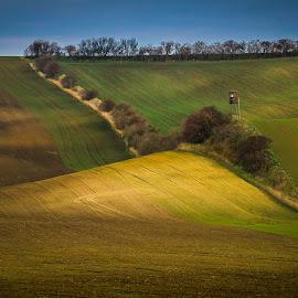 by Joško Šimic - Landscapes Prairies, Meadows & Fields (  )