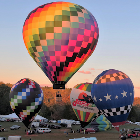 By Dawn's Early Light by Hal Gonzales - Transportation Other ( flying, hot air balloon, floating, take off, balloon )