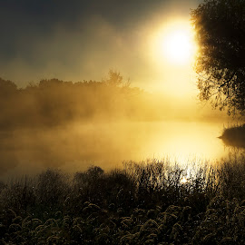 The Pond by Jim O'Neill - Landscapes Waterscapes ( fog, texas, alvord, sunrise, pond )