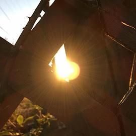 The peeking hole  by Cara Murray - City,  Street & Park  Skylines