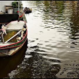 Anchored by Prasanta Das - Transportation Boats ( anchored, rest, boat )