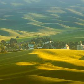 by Gabriel Gutierrez - Landscapes Mountains & Hills ( field, hills, palouse, sunset, town )