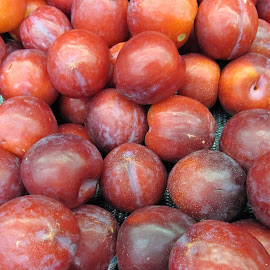 Red plums by Maricor Bayotas-Brizzi - Food & Drink Fruits & Vegetables