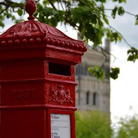 Snail Mail by Steve Frost - Novices Only Objects & Still Life (  )