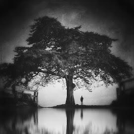 by Jim Perdue - Digital Art Places