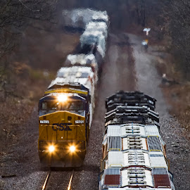 Saying Hi by David Patterson - Transportation Railway Tracks ( thebes, overhead, mississippi river, il., union pacific, trains, tunnel )