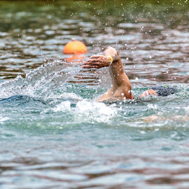 2015 Marina by Hesham Shaaban - Sports & Fitness Swimming ( marina martinique, jeffreys bay, in focus, swimming, competition )