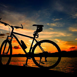 sunset by Darko Čaleta - Transportation Bicycles