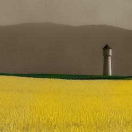 Photo André Bubloz by André Bubloz - Landscapes Prairies, Meadows & Fields