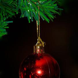 by Драган Рачићевић - Public Holidays Christmas