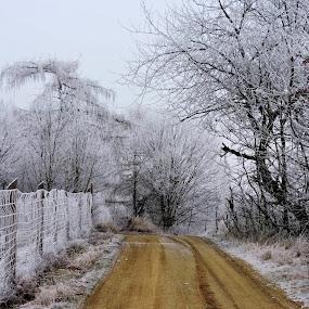 by Jana Kubínová - Landscapes Weather
