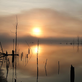 Hazy Rise by Roger Becker - Landscapes Sunsets & Sunrises ( waterscape, sunset, reflections, sunrise, landscape )