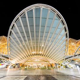 Lisboa Oriente by Marcin Frąckiewicz - Buildings & Architecture Public & Historical ( lisboa oriente )