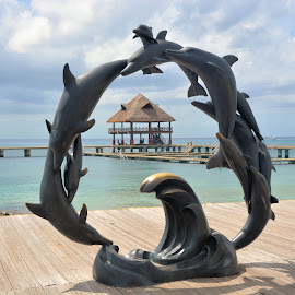 Diving Dolphin by Jesse Thrush - Buildings & Architecture Statues & Monuments ( water, dolphin, carribean, mexico, cozumel, ocean )