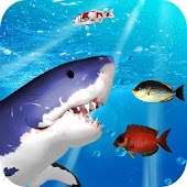 Game Hungry Shark 3D Simulation APK for Windows Phone