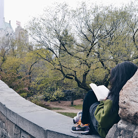 Reading in the Park by Valentina Cantera - City,  Street & Park  City Parks ( central park, peace, paceful, manhattan, reading, bridge, trees, new york )