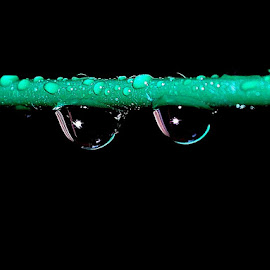 Raindrops by Govindarajan Raghavan - Abstract Macro (  )