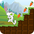 Bunny Run : Peter Legend