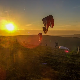 Paragliders by Gábor Kallós - Sports & Fitness Other Sports ( flight, paragliding, mountain, paraglider, paraglideing, sunset )