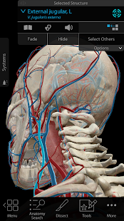 Human Anatomy Atlas 2018: Complete 3D Human Body PC