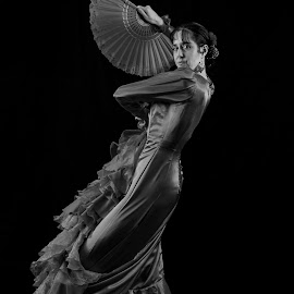 Spanish Dancer by Brian Pierce - People Musicians & Entertainers ( flamenco, spanish, woman, claudia, dance,  )