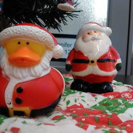 by Jennifer Durham - Public Holidays Christmas