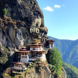 Tiger's Nest by Chintan Daiya - Buildings & Architecture Places of Worship ( paro, bhutan, monastery, nest, tigers, takhtsang )