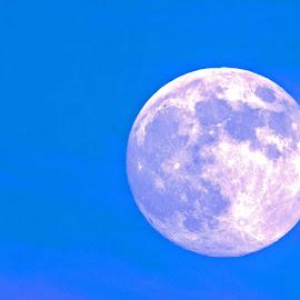 Full Moon by Will McNamee - Landscapes Starscapes ( mcnamee2169@yahoo.com, dld3us@aol.com, gigart@aol.com, danielmcnamee@comcast.net, ronmead179@comcast.net, aundiram@msn.com )