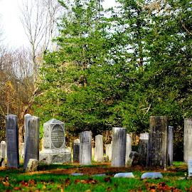 New England Cemetary 2 by Martin Stepalavich - City,  Street & Park  Cemeteries