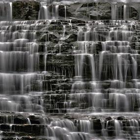 Albion Falls HDR by Brad Chapman - Landscapes Waterscapes ( water, waterfalls, 2013, hdr, falls, mist,  )