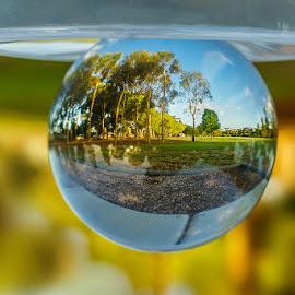 crystal glass by Zdenka Rosecka - Artistic Objects Glass