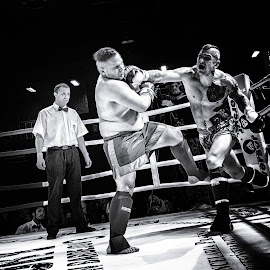 Kick box 1 by Dusan Ignac - Sports & Fitness Boxing ( ring, power, sport, round, man )