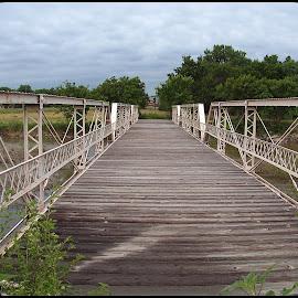 old bridge  by Rita Flohr - Novices Only Objects & Still Life ( water, structure, old bridge, architecture, bridge, landscape, river )