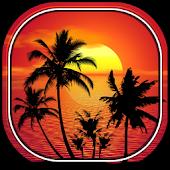 Tropical Live Wallpaper