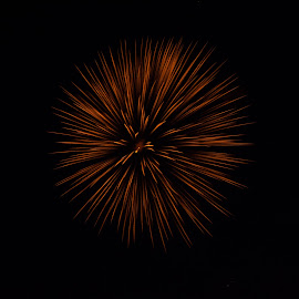 Fire Thistle by Evan Mccallum - Abstract Fire & Fireworks ( night shots, canada, firework, night lights, canada day, simple, minimalism, two tone, night, celebration, nikon, light, slow shutter, flower )