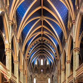 Notre-Dame Cathedral Basilica by Roselyne Rheaume - Buildings & Architecture Places of Worship ( interior, church, blue, notre-dame, ottawa, cathedral, fuji x-t1, basilica, nave )