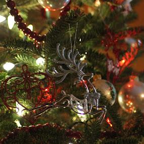 Silver Deer on the Tree by Amanda Saxton-Jenson - Public Holidays Christmas (  )