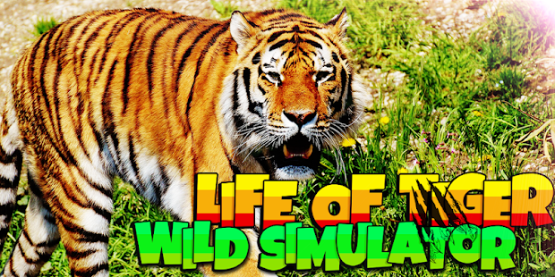 Энциклопедия для малышей тигры, д маклейн